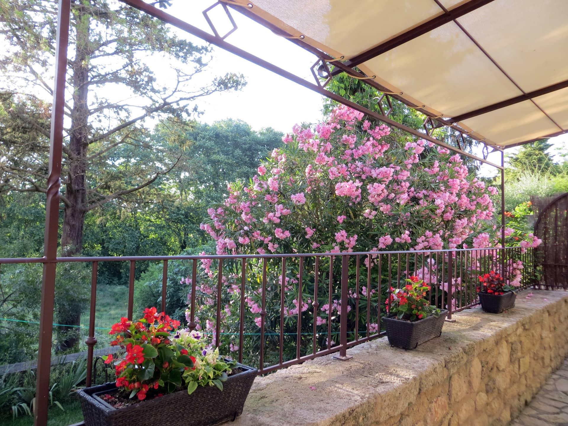 Gite et lauriers roses Domaine de Christin