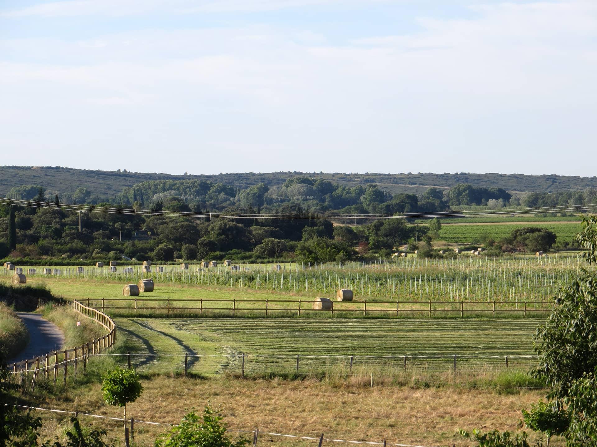Prairies du Domaine de Christin